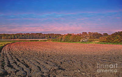 Colourfull Photograph - Rural Sunset by David  Hollingworth