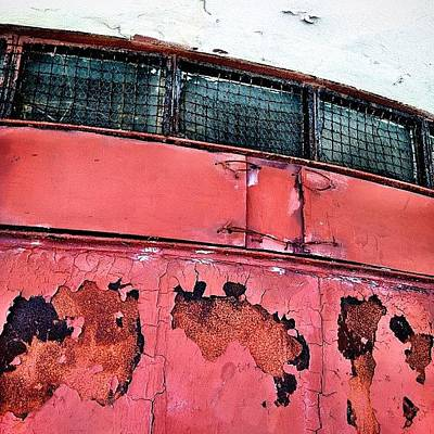 Rust Photograph - Rust by Natasha Marco