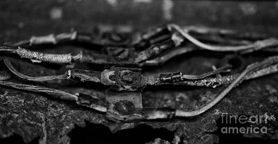 Photograph - Rusty Wires  by Wilma  Birdwell