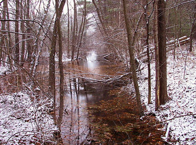 Photograph - Sacred Stream by Frank Winters