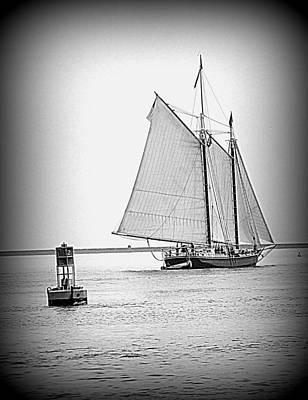 Photograph - Sail Away by Doug Mills