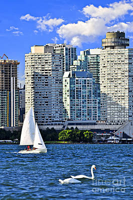 Swan Photograph - Sailing In Toronto Harbor by Elena Elisseeva