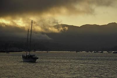 Photograph - San Francisco Bay by Anthony Citro