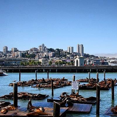 California Wall Art - Photograph - San Francisco by Luisa Azzolini