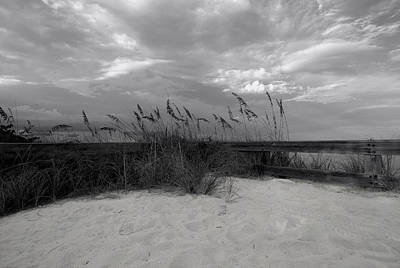 Photograph - Sand And Sea by Laura DAddona
