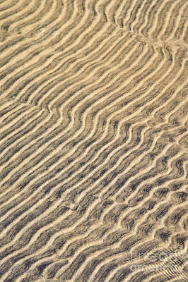 Sand Ripples In Shallow Water Art Print by Elena Elisseeva