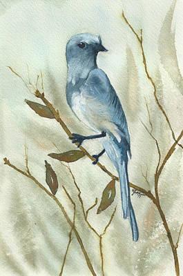 Scrub Jay Painting - Scrub Jay by Elise Boam