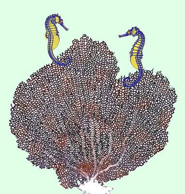 Sea Fan And Seahorses, X-ray Art Print