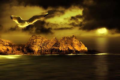 Storm Digital Art - Seagull Flight by Jaroslaw Grudzinski