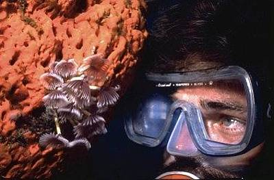 Photograph - Self Portrait On Snowfields Reef by Don Kreuter