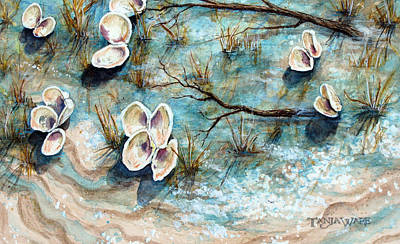 Cape Cod Painting - Shell Shadows by Tanja Ware