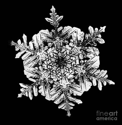 Photograph - Snowflake by Science Source