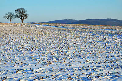 Winter Landscapes Photograph - Snowy Fields In Winter by Sami Sarkis