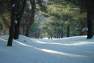 Photograph - Snowy Wilderness by Rafael Figueroa