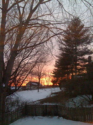 Photograph - Snowy Winter Sunset by Barbara Plattenburg