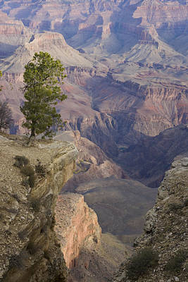South Rim, Grand Canyon, Arizona, Usa Art Print by Peter Adams