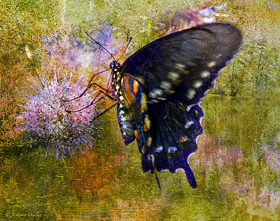 Digital Art - Spicebush Swallowtail Butterfly by J Larry Walker