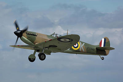 Photograph - Spitfire Mk IIa by Tim Beach