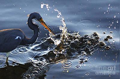 Splash Print by Bob Christopher