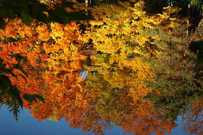 Falls Photograph - Splash Of Color by LeeAnn McLaneGoetz McLaneGoetzStudioLLCcom