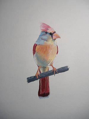 Spring Cardinal Art Print by Norm Starks