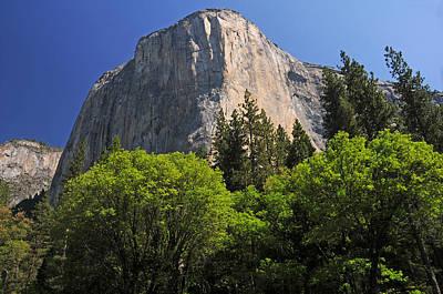 Photograph - Spring Views Of El Capitan by Lynn Bauer