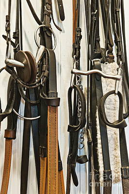 Horse Back Riding Photograph - Stable Tac Room by John Greim
