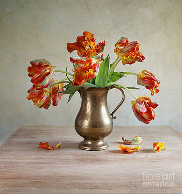 Cut Flowers Photograph - Still Life With Tulips by Nailia Schwarz