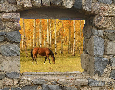 Stone Window View And Beautiful Horse Art Print by James BO  Insogna