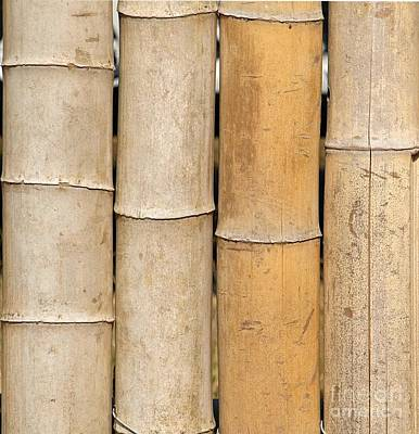 Straight Bamboo Poles Art Print by Yali Shi