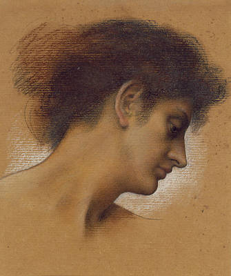 Chin Pastel - Study Of A Head by Evelyn De Morgan