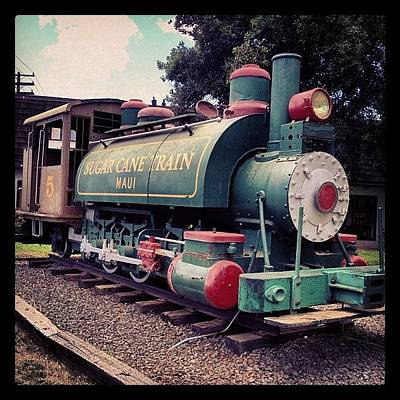 Green Wall Art - Photograph - Sugar Cane Train by Darice Machel McGuire