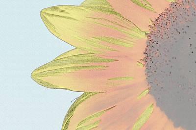 Digital Art - Sunflower Close Up by Brandon Bourdages
