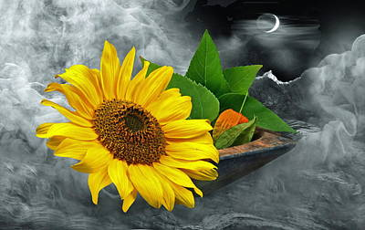 Sunflower Art Print by Manfred Lutzius
