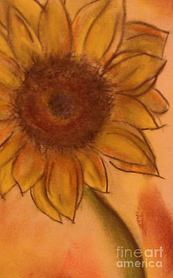 Drawing - Sunflower by Tammy Herrin