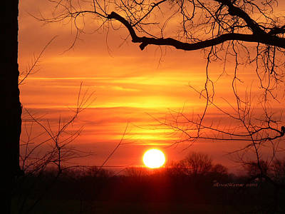 Art Print featuring the photograph Sunrise In Tennessee by EricaMaxine  Price