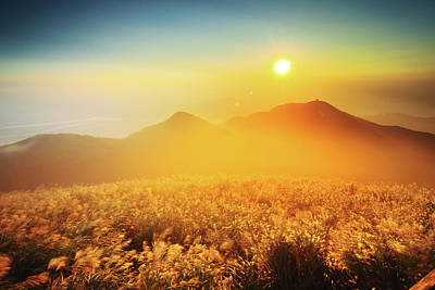 Taipei Photograph - Sunset And Silver Grass Blossoms by Joyoyo Chen
