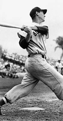 Baseball Uniform Photograph - Ted Williams Of The Boston Red Sox, Ca by Everett