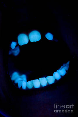 Photograph - Teeth by Ted Kinsman