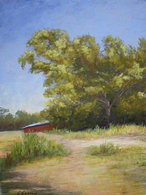 Tennessee Barn Art Print by Carol Conrad
