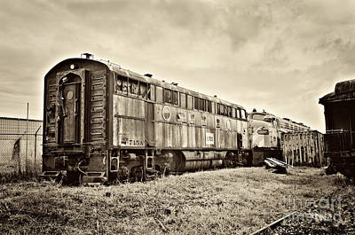 Photograph - Tennessee Central Museum - Train Boxcars by Cheryl Davis