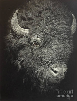 Yellowstone Mixed Media - The American Bison by Liam Scott