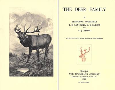 The Deer Family Was First Published Art Print by Everett