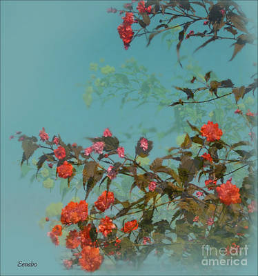 Photograph - The End Of Summer by Eena Bo