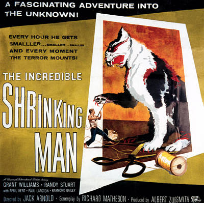 1957 Movies Photograph - The Incredible Shrinking Man, 1957 by Everett