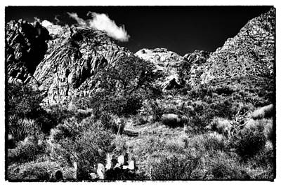 Photograph - The Landscape Of Red Rock Canyon Nevada by David Patterson