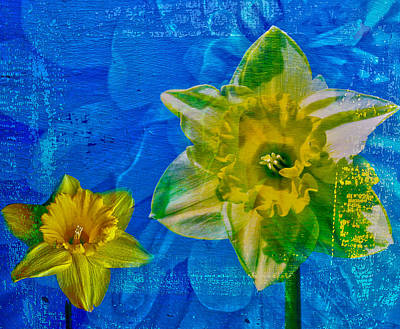 The Laughing Daffodil  Art Print by Jerry Cordeiro