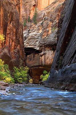 Zion National Park Photograph - The Narrows In Zion by Pierre Leclerc Photography