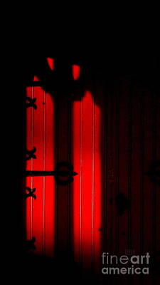 Photograph - The Red Door by Leela Arnet