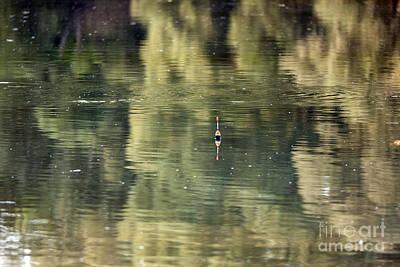 Czintos Photograph - The Swimming by Odon Czintos